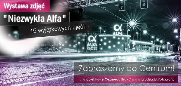 """Wystawa zdjęć """"Niezwykła Alfa"""" w obiektywie Cezarego Brak"""